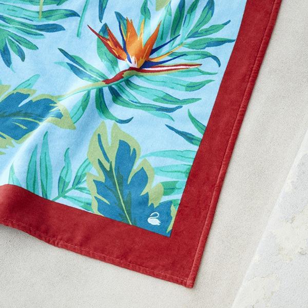 tropical-drap-plage